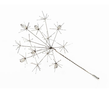 http://www.kathlibbertjewellery.co.uk/optimised-images/Traces/mather_Dandelion-Brooch.jpg